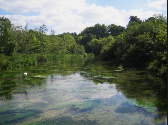 Flood Alert: Mansbridge and Riverside Park