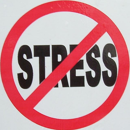 Did You Know It Is Stress Awareness Month?
