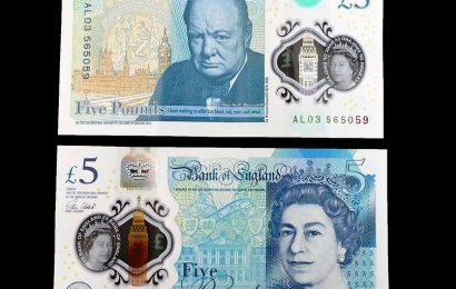 Animal fat found in five-pound notes