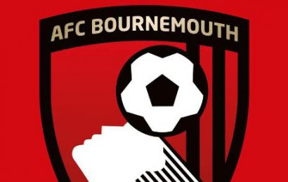 AFC Totton sign goalkeeper Pat O'Flaherty on loan from AFC Bournemouth