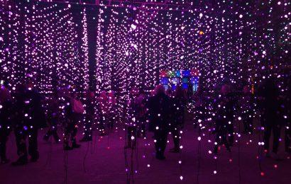 Southampton hosts Festival of Light