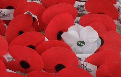 White poppies start to be sold in Southampton