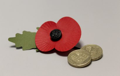 Charities accepting old pound coins as Remembrance Day and Children in Need approaches