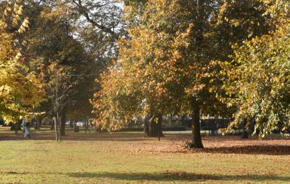 Southampton Experiencing Summer in Autumn