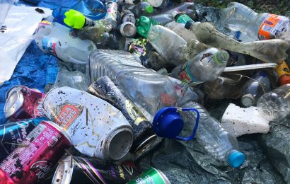 Record number of people attend Chessel Bay beach clean up