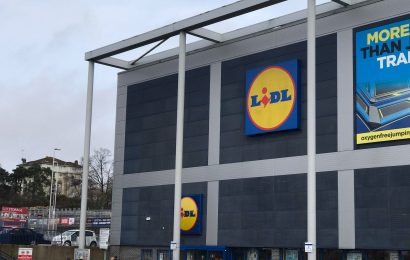 Toddler bitten by dog outside Southampton Lidl store