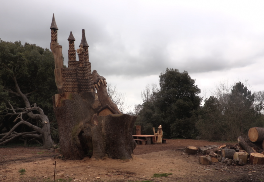 Magical Kingdom carved from tree in Royal Victoria Country Park