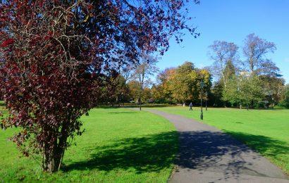 Southampton parks win excellence award